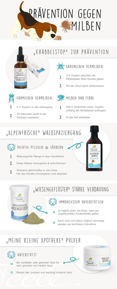 Infografik Milben & Flöhe, Hund Feele